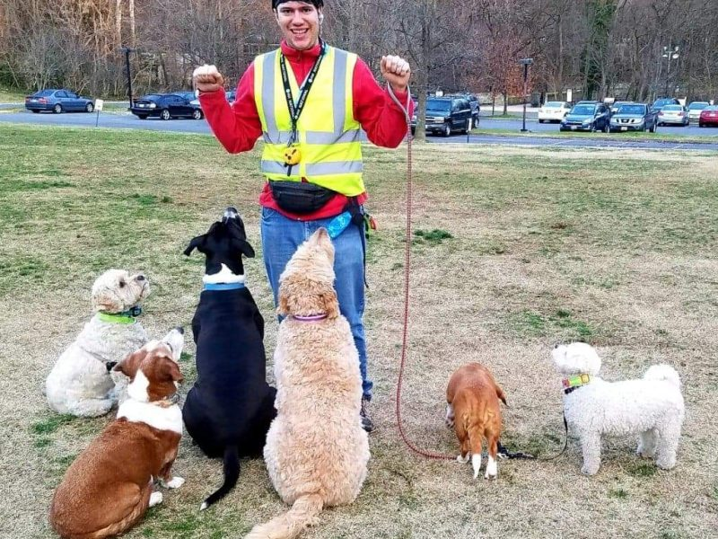 Photo of Ben Sternfeld wearing red shirt and yellow vest standing in a field surrounded by six dogs.
