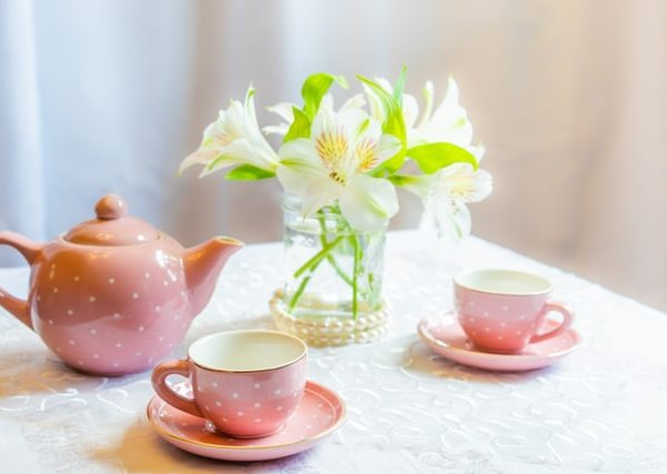 Independence Now Annual Women's Tea